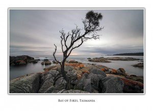 Bay of Fires Tasmania: Greeting Card