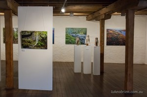"""Love the Tarkine"" - photography and art exhibition, Long Gallery, Tasmania"