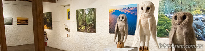 Tarkine Exhibition Opening Night Photos
