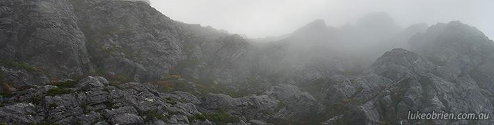Autumn in Tasmania: Fagus on Mt Murchison