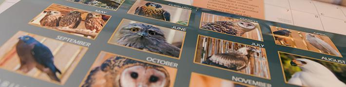 Raptor Refuge of Tasmania 2014 Calendar