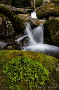 Liffey River Cascades