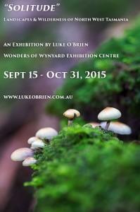 Luke O'Brien Photography - Wonders of Wynyard Exhibition