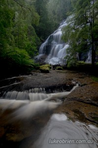 McGowans Falls in the Tarkine rainforest, north west Tasmania