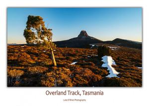 tasmanian postcards overland track