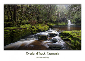 Ovreland Track Postcard Tasmania