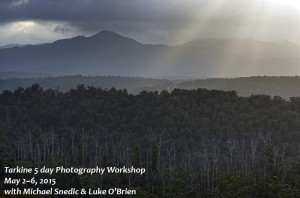 Tarkine Photography Tour Tasmania