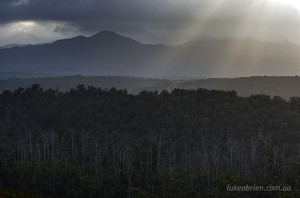 Morning light, Western Explorer in Tasmania's Tarkine