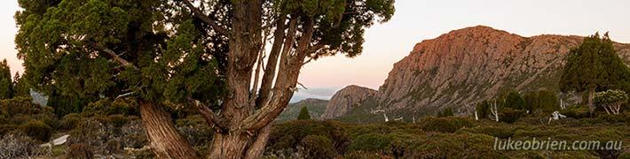 Tasmanian Bushfires