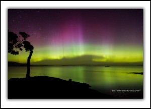 Aurora Australis Tasmania Fine Art Prints - Nine Pin Point