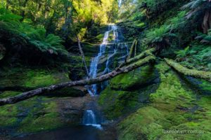bastion cascades meander tasmania
