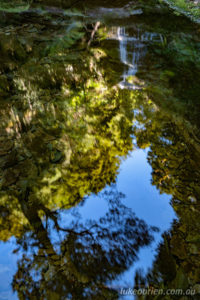 reflections in the creek below the waterfall