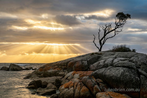 Bay of Fires Crepuscular Rays