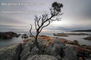 Bay of Fires Photography Workshop