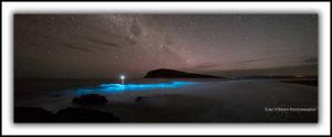 Bioluminesence South Arm Tasmania