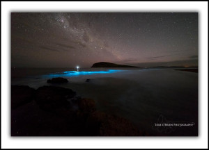 L232: Bioluminescence South Arm, Tasmania