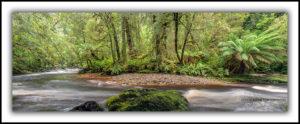 Bird River, western Tasmania