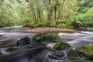Bird River Tasmania