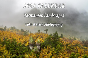 2019 calendar - now available!