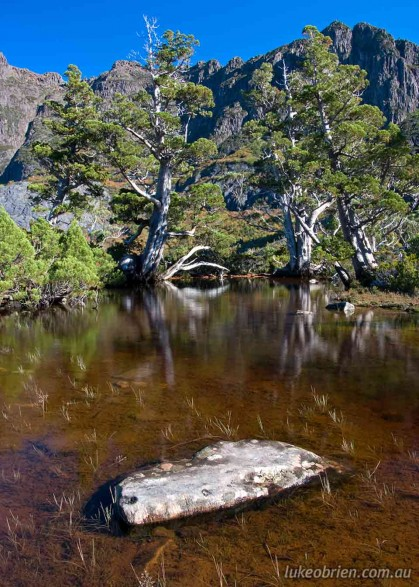 Artists Pool at Cradle Mountain, Tasmania