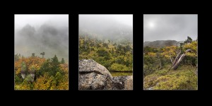 Tasmanian Landscape Photography Autumn Cradle Mt-Tarn Shelf-Tyndalls