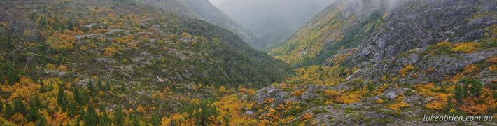 Fagus – Cradle Mountain in Autumn