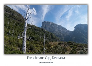Frenchmans Cap Tasmanian Wilderness Postcard
