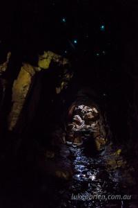 glow worm cave tasmania