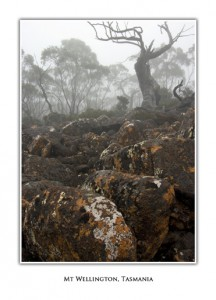 Greeting Cards Tasmania Mt Wellington