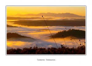 Tasmanian Greeting Cards - Tarkine Mt Donaldson sunrise