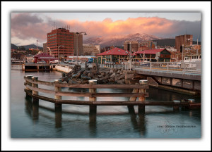 Sunrise Hobart Waterfront, Tasmania