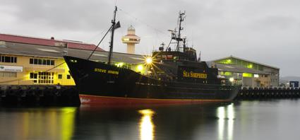 Sea Shepherd's Steve Irwin