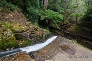 Lifey Falls Tasmania - The Spout
