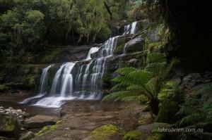 Liffey Falls and rainforest, Tasmania