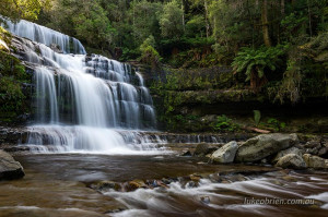 Liffey Falls Track Open April 2017