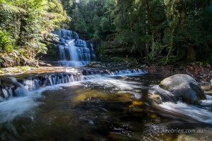 Liffey Falls reopen April 2017