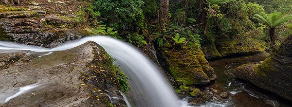 Liffey Falls Tasmania - the spout
