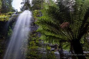 Marriotts Falls Tasmania