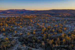 Black Bluff in the morning light