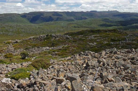 Mt Field East, Summit View