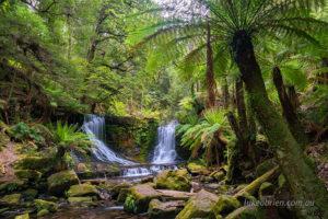 mt field and styx tour tasmania
