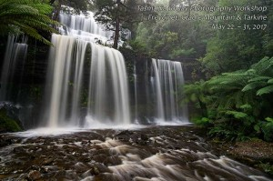 Russell Falls Mt Field Photography Tour Tasmania