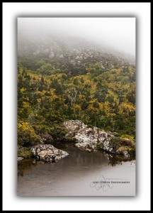 L 126: Tarn Shelf at Mt Field. Autumn.