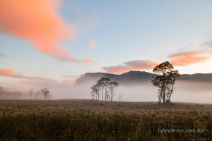 Sunrise Pelion Plains Overland Track
