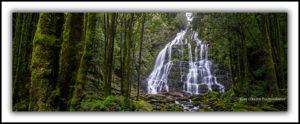Waterfalls of Tasmania Nelson Falls