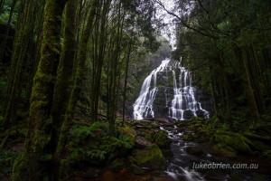 nelson falls tasmania
