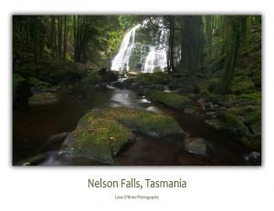 Tasmanian postcards - Nelson Falls