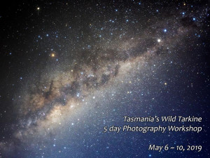tarkine night sky photography workshop tasmania