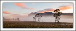 Pelion Plains and Mt Oakleigh, Dawn
