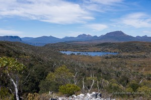 Pelion and Pine Forest Moor area, Overland Track